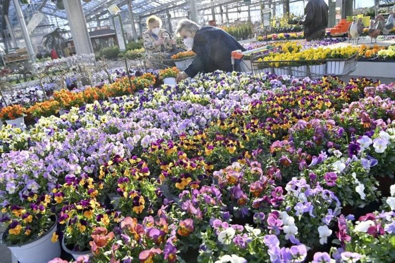 ألمانيا سمحت لمحلات بيع الزهور بمعاودة العمل.