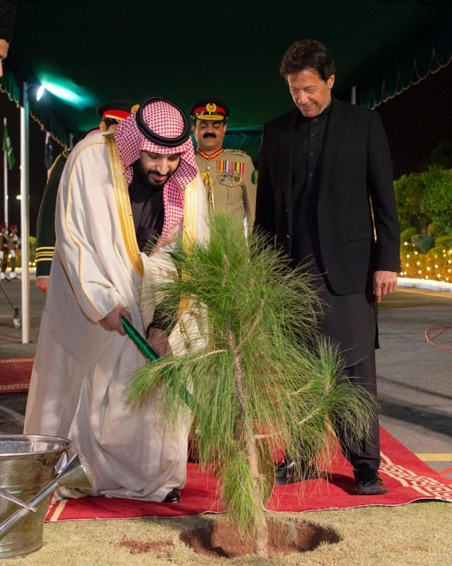 علاقة الأمير محمد بن سلمان والأشجار تؤكد حرصه على حماية البيئة.