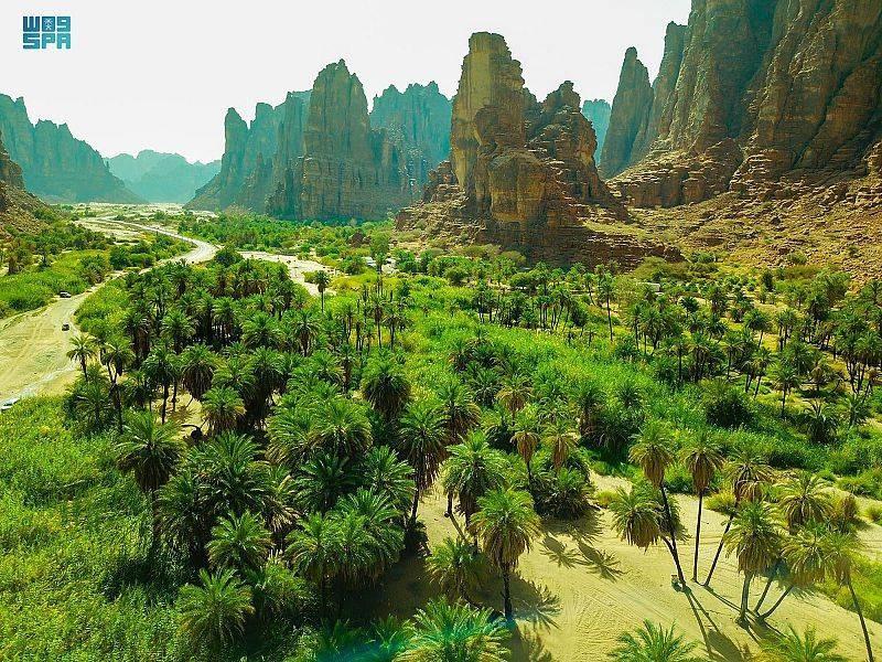 مناظر خلابة في وادي الديسة بتبوك