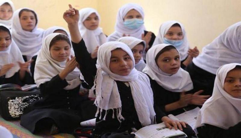 طالبات أفغانيات.